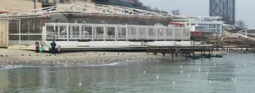 Погода на 12 лютого. В Одесі синоптики прогнозують сильні пориви вітру