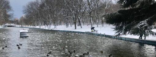 Погода на 7 лютого. В Одесі буде сніг та сильні пориви вітру