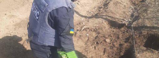 На Одещині на своєму городі чоловік знайшов 102 ручні гранати (фото)