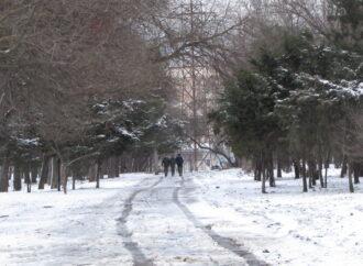 Снег в Одессе преобразил старый заброшенный парк (фоторепортаж)