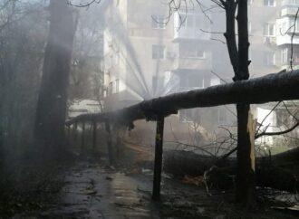 Дерево упало на теплотрассу в Одессе: жители 4 жилых домов остались без тепла