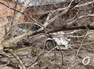 Внимание: на Одессу вновь надвигается штормовой ветер