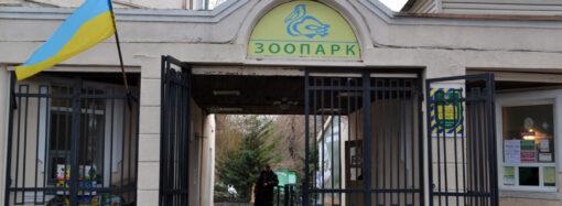 Впродовж 2019 року в Одеському зоопарку побувало понад 300 тисяч відвідувачів