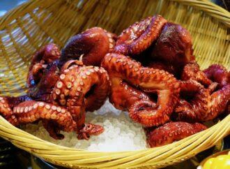Как приготовить вкусное блюдо из осьминога в домашних условиях?