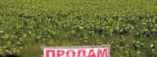 Закон принят: Верховная Рада разрешила продавать украинские земли сельхозназначения