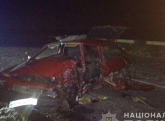 ДТП в Одесской области унесло жизнь автомобилиста