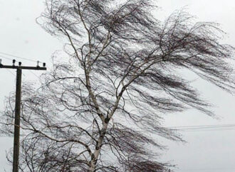Просят не гулять и не бросать авто: Одессу и область может накрыть шторм