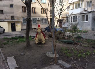 В одесском дворике поселились экзотические звери (фото)
