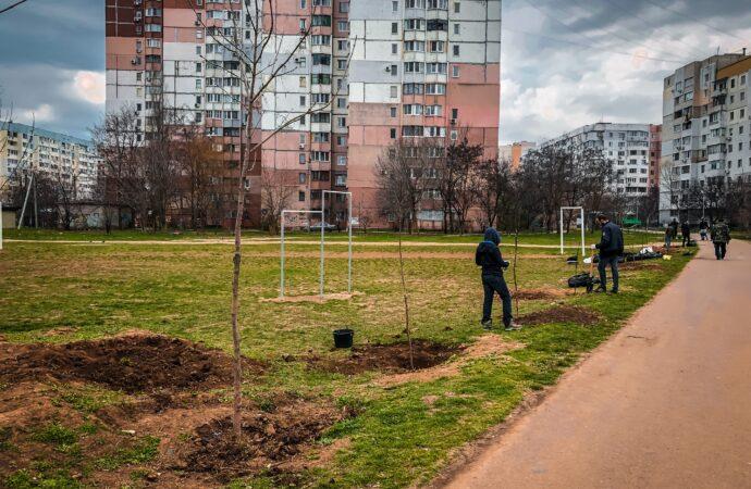 На выходных в Одессе активисты вышли озеленять город (фото)