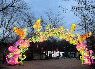 Сверкающая феерия: в Зеленом театре Одессы открылась выставка китайских мега-фонарей (фото)