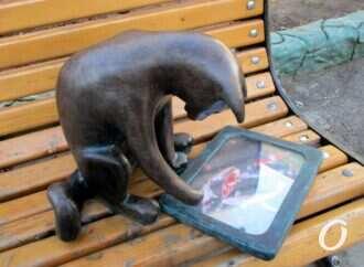 «Всем мяу!»: одесская кошка-геймер снова на своем месте – с планшетом и секретом