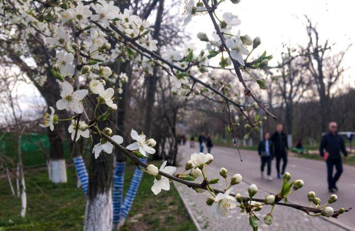 Погода на 22 березня. В Одесі синоптики прогнозують дощ