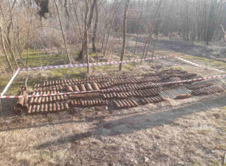 В лесополосе под Одессой нашли склад взрывоопасных снарядов (фото)