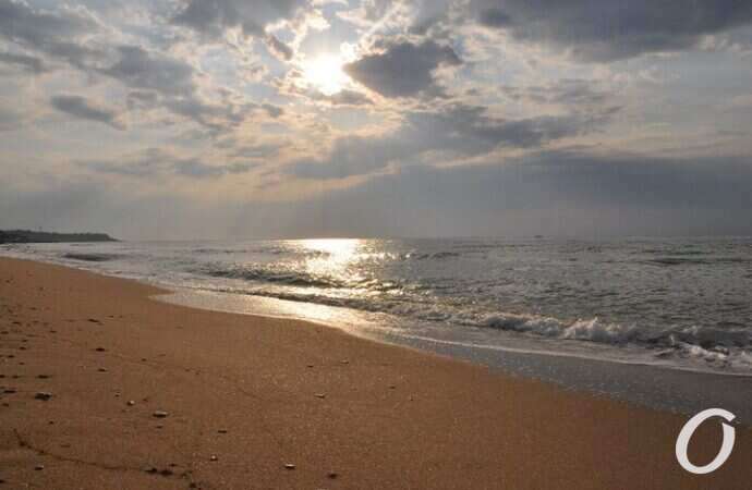 На пляже в Одессе заметили президента Украины (видео)