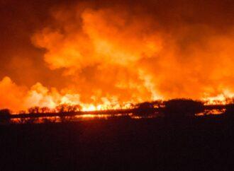 В Одеській області прогнозують надзвичайний рівень пожежної небезпеки