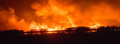 Жителей Одесской области предупредили о чрезвычайной пожарной опасности