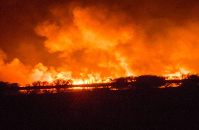 В Одеській області високий рівень пожежної небезпеки