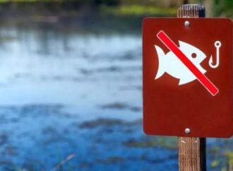 С апреля в Одесском регионе запретят ловить рыбу