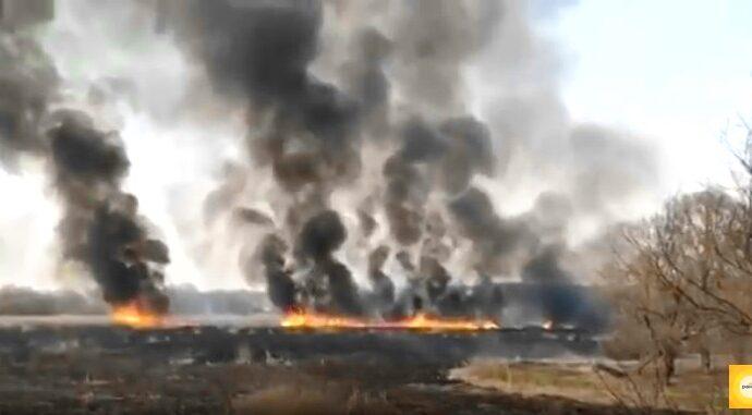 За три месяца 2020 года сгорело столько же травы и леса, как за весь 2018 год