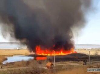 На окраине Одессы горел камыш: черный дым долетал до центра (видео)