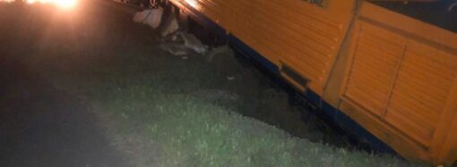 В Одессе грузовой поезд сошел с рельсов и загорелся