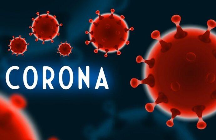 Хроники коронавируса: рынки на карантине и запрет въезда в Подольск