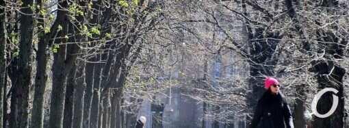 Бульвар Жванецкого: карантинная жизнь перед «ужесточением режима» (фото)