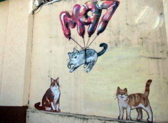 Улыбаемся: на фасаде старого одесского дома поселились котики (фото)