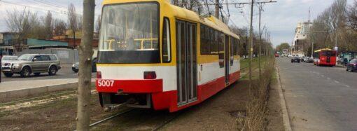 «Зеленый туннель»: трамвайные пути на одесском Фонтане облагородили растительностью (фото)
