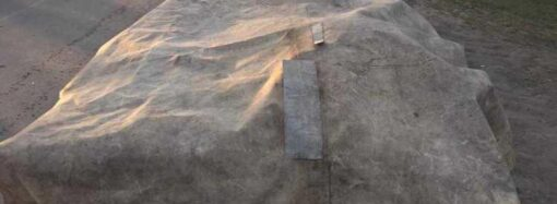 На Одещині чоловіки зв'язали та викрали корову (фото)