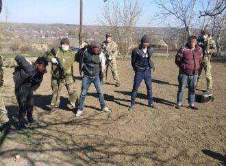 На чердаке и с баяном: в Одессе обнаружили группу нелегалов из Молдовы