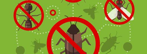 Полезное на карантине. Электронные отпугиватели насекомых и грызунов — спокойный отдых и хороший урожай