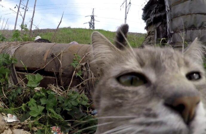 В Одесі першокласник звернувся до міського голови з проханням прибрати сміття на Слобідці (відео)