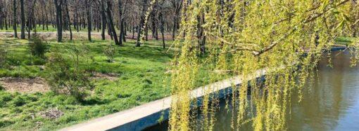 Погода на 7 квітня. В Одесі синоптики прогнозують потепління
