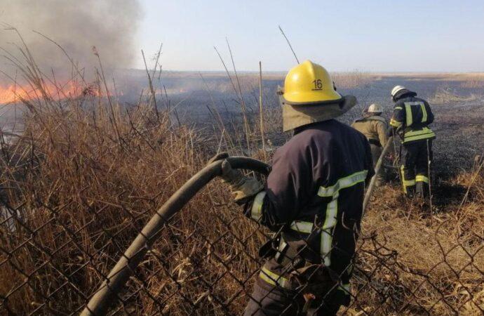 Под Одессой горели заповедные плавни (фото, видео)