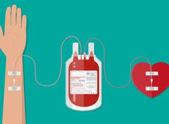 Колективно чи індивідуально: одеситів запрошують стати донорами крові