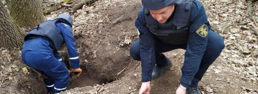 Від початку року на Одещині піротехніки вилучили та знищили 1800 вибухонебезпечних предметів