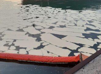 Что произошло в Одессе 6 мая: пальмовое масло в Черном море и демонтаж бюста Котовского