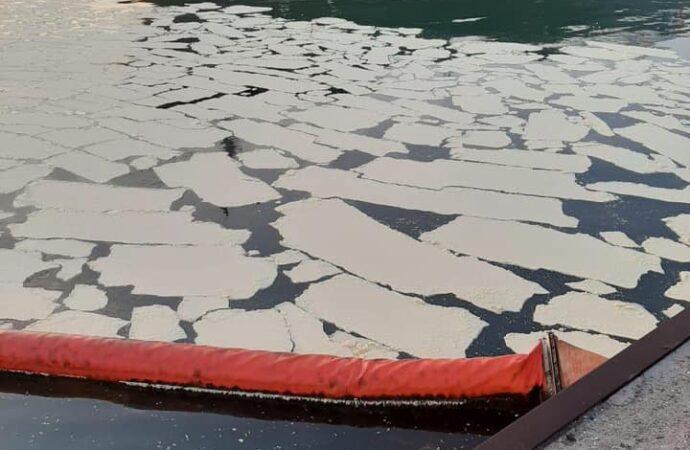 На Одещині в акваторію Чорного моря вилилося майже 8,5 тонн пальмової олії (фото)