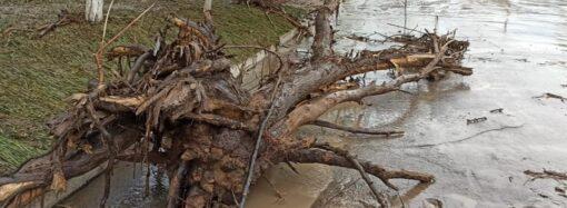 На Одесчине дождь с градом повредил дороги, деревья, дома и мосты (фото)