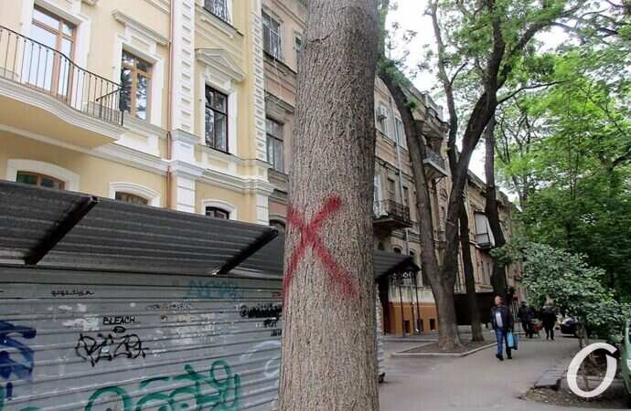 Шумахеру мешают деревья в Одессе