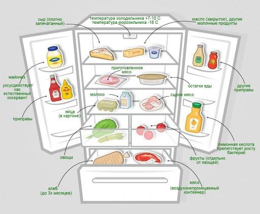 Раскладка продуктов в холодильнике