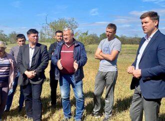 Одесская область может остаться без урожая, а фермеров ждет банкротство