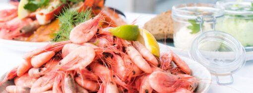 В Черном море запретят ловить креветки и мидии
