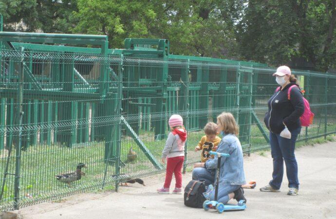 Зверушки откарантинили: Одесский зоопарк принял первых посетителей (фото)