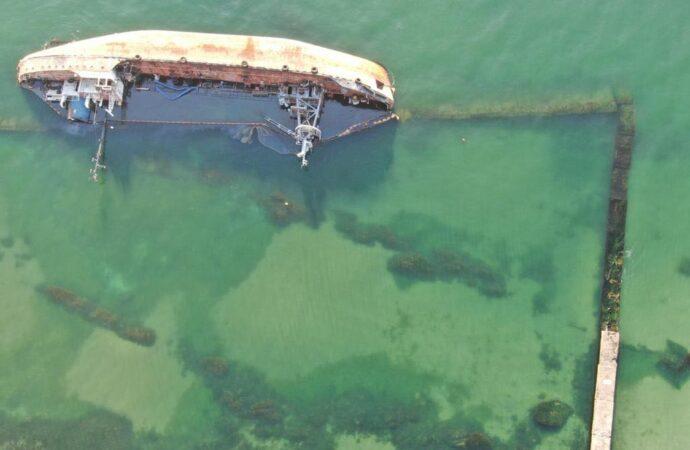 В Одесі неподалік танкера Delfi знайшли мертвого дельфіна (відео)