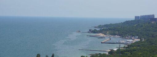 "Викиди з танкера Delfi уже досягнули пляжу ""Отрада"" (фото)"