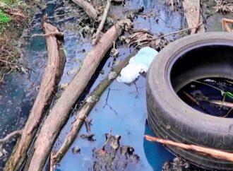 Черная вода одесского парка: что с водоемами в парке Савицкого?
