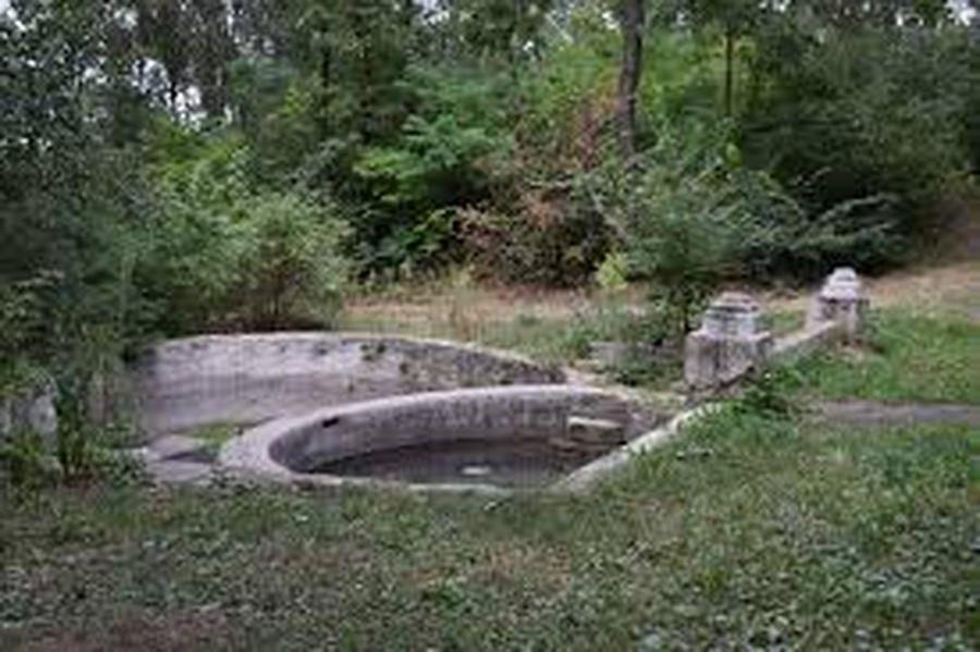 кардамычевский парк