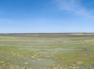 В Одесской области хотят восстановить русло реки Киргиж-Китай (фото)